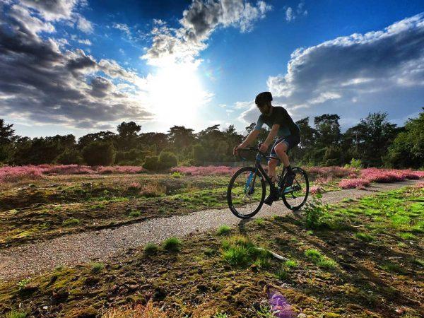 Wielrennen hei in bloei